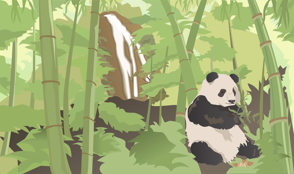 panda, bamboo, waterfall